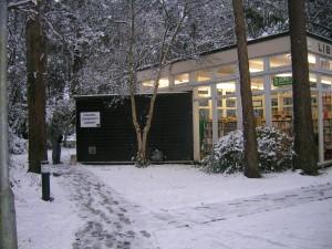 CCL-snow-004